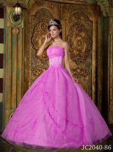 Rose Pink Organza Appliques Quinceanera Dresses in Atalaya Veraguas