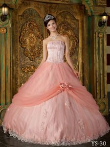 Flower Watermelon Tulle Appliques Quinceanera Gown Dress in Cokabilla