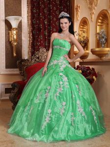 Strapless Floor-length Appliques Dress For Quinceanera in Green