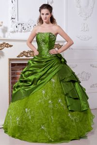 Olive Green Strapless Floor-length Embroidery Quinceanera Dress