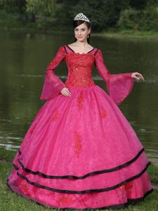 Long Sleeves Appliques Hot Pink Quinceanera Dress With V-neck