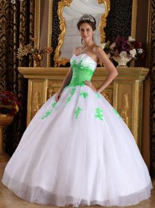 White and Spring Green Appliques Quinceanera Dress in Dijon France