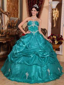 fe85e51bcb5 Pick ups Appliques Organza Appliques Quinceanera Dress in Aalen Germany