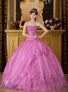 Sweetheart Appliques 2013 Ball Gown Long Dress for Quinceanera Gown