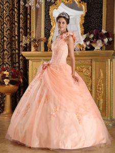 Peach Floral One Shoulder Appliques Quinceanera Dresses in Burnie TAS