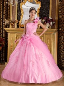 Pink One Shoulder Appliques Quinceanera Dress in Port Adelaide SA