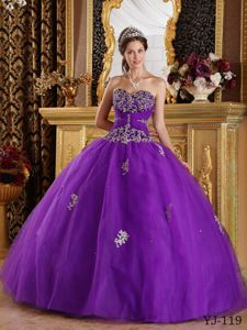 Eggplant Purple Tulle Appliques Sweet 16 Dress in Erbach Germany
