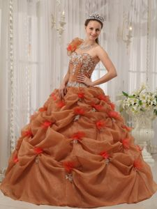 Rust Red Appliques One-shoulder Quinceanera Dress in Augustdorf