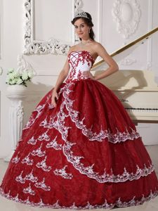 Appliques Sweet Sixteen Quinceanera Dresses in Akron with Lace Up Back