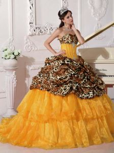 Orange Sweetheart Leopard Appliques Quinceanera Dresses with Brush
