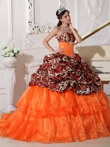 Brush Leopard Appliques Orange Sweetheart Quinces Dresses in Camp Hill