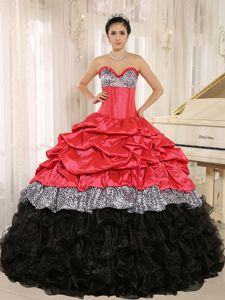 Leopard Watermelon and Black Ruffles and pick-ups for Quinceanera Gowns