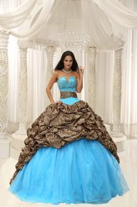 Leopard and Pick Ups Multi-color Sweet 16 Quinceanera Dresses near Sponer